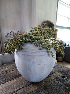 Dadeltakken als decoratie bij Stoer & Stijlvol landelijk wonen.