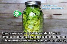 Marre que votre salade verte pourrisse dans le frigo ? C'est vrai que la salade s'abîme très vite... Et une fois flétrie, il n'y a plus qu'à la jeter. Quel gâchis ! Heureusement, il existe un truc simple pour conserver la salade pendant 1 mois. Oui, vous avez bien lu : 1 mois ! Pour qu'une salade reste fraîche longtemps, l'astuce est de la conserver dans un bocal en verre. Regardez : Kombucha, Salad Recipes, Healthy Recipes, Healthy Food, Tasty, Yummy Food, Food Videos, Pickles, Cucumber