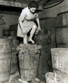 A woman stomping grapes for wine in Frascati, Italy. Vintage Italy, Vintage Wine, Vintage Ladies, Italian People, Italian Wine, Old Pictures, Old Photos, Vintage Pictures, Nostalgic Pictures