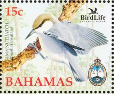 Brown-headed Nuthatch stamps - mainly images - gallery format