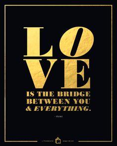 Vitamin D: Love Everything