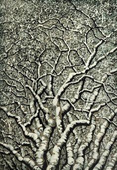 Andrea Starkey ~ Tree No. 23 (woodblock)