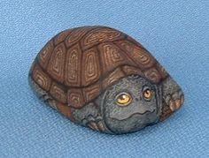 2958-909-Turtle.jpg 359×273 pixels