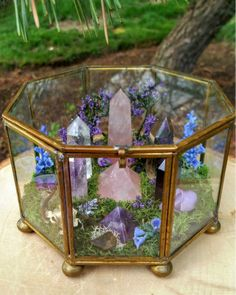 Beautiful Terrarium Ideas What Is A Terrarium? A terrarium is essentially an enclosed environment for growing plants. They are usually made of clear glass or plastic and … Rocks And Gems, Rocks And Minerals, Crystals And Gemstones, Stones And Crystals, Wicca Crystals, Crystals In The Home, Blue Crystals, Swarovski Crystals, Quartz Crystal