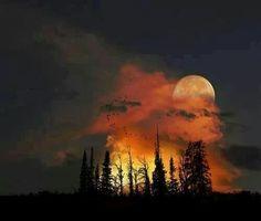 Moon rise in Colorado