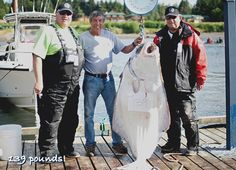 Guided sport fishing for trophy Halibut, Naden Harbour, BC. Halibut Recipes, Sport Fishing, Sports, Hs Sports, Sport