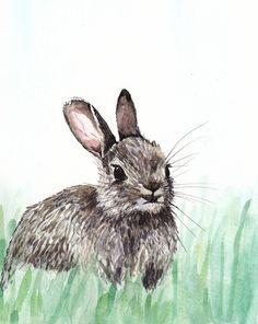 Bunny rabbit Art Print