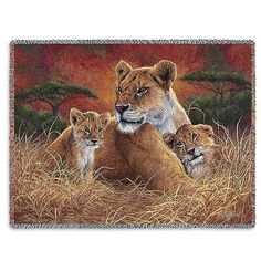 70x53 LION Mother & Cubs Wildlife Tapestry Afghan Throw Blanket