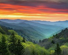 Great Smoky Mountains National Park Gatlinburg Tn Scenic Landscape Poster by Dave Allen - summer landscape photography - Photography Beach, Landscape Photography Tips, Mountain Photography, Scenic Photography, Photography Magazine, Maternity Photography, Grunge Photography, Photography Guide, London Photography