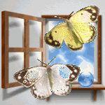 Бабочки - анимация на телефон №851615