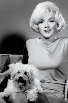 Marilyn Monroe & her dog Maf Honey at the Beverly Hills Hotel, 1961