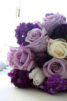 purple, lavender & white roses