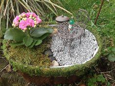 """Miniatur Garten """"Grill Platz""""  Miniatur Gärten Oberberg"""