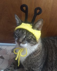 Bumblebee Cat Hat by StitchedAdventures on Etsy