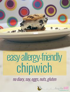 Yum-O! An allergy-friendly knock-off of my favorite childhood ice cream truck treat! Easily made with 3 ingredients and in under 5 minutes. (busybeekate.com)