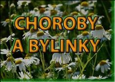 Vyberte si neduh a hledejte bylinky Healing Herbs, Medicinal Herbs, Look Body, Dieta Detox, Home Recipes, Herbal Tea, Kraut, Natural Medicine, Natural Cures