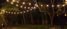 How To Hang Patio Lights - patterns, bulb types, stringer designs, power, ideas/inspiration...