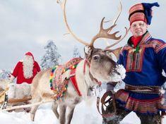 Santa Claus Reindeer - poroajeluelämys - Rovaniemi, Suomi | DiscoveringFinland.com