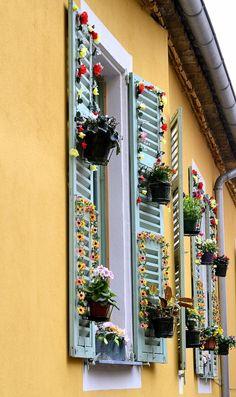 Flower Window, Menton (Côte d'Azur) , France --paint trim around the shutters Marcia Luz, Provence, Saint Martin Vesubie, Cagnes Sur Mer, Cap D Antibes, Villefranche Sur Mer, Flower Window, Colourful Buildings, Window View