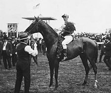 Sir Huron Winner of the 1906 Kentucky Derby. Notable because it marked the first time that a horse had won the Derby without a single prep race as a three-year-old Preakness Stakes, Derby Horse, Derby Winners, American Pharoah, Sport Of Kings, Thoroughbred Horse, Racehorse, Courses, Horse Racing