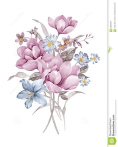 Watercolor Illustration - Download From Over 61 Million High Quality Stock Photos, Images, Vectors. Sign up for FREE today. Image: 62852918