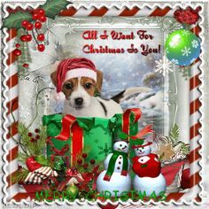 All I want for Christmas is You! ~ Blingee by stina scott ~ dog, snowman, snowwoman, candy canes Hello Kitty Christmas, Merry Christmas To All, Cozy Christmas, Christmas Stuff, Beautiful Christmas, Christmas Cards, Christmas Ornaments, Happy New Year Gif, Friends Gif