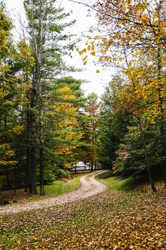 Ever wanted to see Vermont in the fall? Check out my quick guide for the best time to experience the best fall foliage, pictures of our beautiful state, and fun things to do while you are here.
