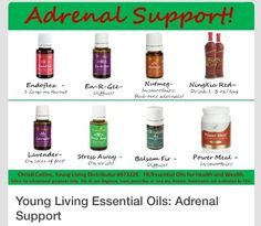 Just a few of the Young Living products I use and LOVE for Adrenal Support! Yl Essential Oils, Yl Oils, Young Living Essential Oils, Essential Oil Blends, Adrenal Support, Healing Oils, Healing Hands, Adrenal Fatigue, Adrenal Health
