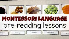 Learn Authentic Montessori Pre-Reading Language Lessons