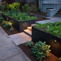 Entry woth Riased Vegetable Beds