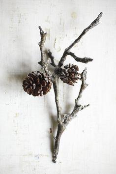 wirsingstrudel mit rostbratwürstchenbrät oder warum der herbst und der winter nicht in den sommermonaten ist