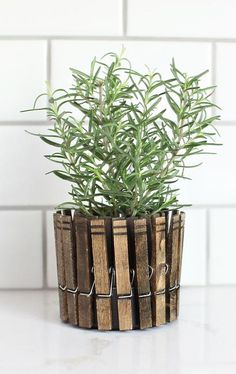 DIY mother's day gifts DIY CLOTHESPIN HERB PLANTERS