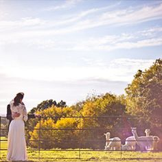 A relaxed & rustic family farm wedding in the English Countryside, with beautiful foodie details and a family of alpaca's!