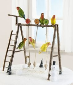♥ Pet Bird DIY Ideas ♥ DIY Small Pet Swing Set