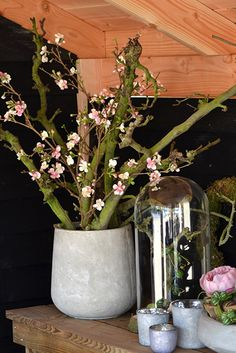 Beautiful concrete pot with decoration branches and blossoms (artificial flowers) - easy to make and pretty, and easy to maintain