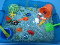 "Ocean Sensory box/binThis includes:  6 cups blue rice 1 plastic bucket 1 small cup 1 squishy sponge 3 pieces ""seawead"" 4 seashells 1 shovel 1 scoop 1 spoon 6 realistic sea animals ( may vary from ones shown in picture) 6 assorte gems 1 pair of tongs 1 real star fish 1 label to help organize your new sensory bins!"