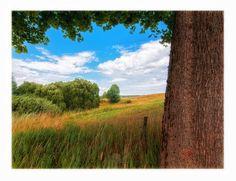 Paysage d'été au Nord de la Pologne