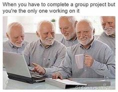 Harold works on a group project | Hide the Pain Harold meme