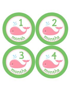 Monthly Onesie Stickers for Baby Girls in Pink Whales...Favorite Baby Shower Gift or 1st Birthday Decor. $9.00, via Etsy.