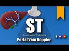 Portal Vein Doppler Protocol - YouTube Liver Anatomy, Ultrasound, Pediatrics, Us Images, Portal, Youtube, Youtubers, Youtube Movies