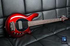 Musicman Bongo Bass V - Cherry Red Bass Guitars, Acoustic Guitars, Electric Guitars, I Love Bass, Bass Amps, Guitar Stand, Cool Guitar, Cherry Red, Music Stuff