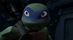 the awesomeness! | TMNT | Leo | Raph | Mikey