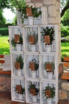 Tableau di matrimonio con piantine aromatiche in vasetti.