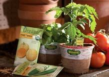 Veggie garden guide from Home Depot