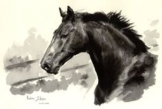 Horse - ecoline by ~AndreaSchepisi on deviantART