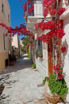 Streets of Syros Island, Greece Beautiful Streets, Beautiful Places, Syros Greece, Places To Travel, Places To Go, Italian Street, Greece Islands, Greece Travel, Crete