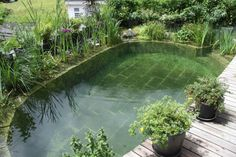 This pond by BioNova Natural Pools is perfect for a quick wade in the summer heat