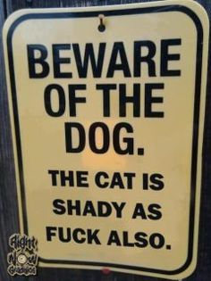 Need a sign like this if you have a Siamese....they literally will attack, and chase anything that is strange to them---they don't give up either!
