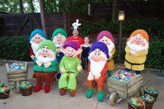 7 Dwarves MNSSHP 2012