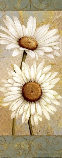 Beautiful Daisies I by Daphne Brissonnet Floral Still Life Art Print Tole Painting, Painting & Drawing, Daisy Painting, Pintura Tole, Pintura Country, Arte Floral, Pictures To Paint, Flower Art, Art Flowers
